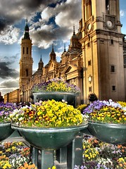 Bowls of flowers (Bonsailara1) Tags: flowers blue light sky flores color spain cathedral catedral bowl clauds zaragoza pensamientos greatphotographers superaplus aplusphoto bonsailara1