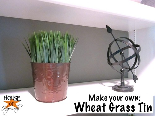 wheat_grass_dollar_store_02