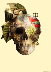 Naturaleza Muerta 1 (laprisamata) Tags: madrid dead skull design spain natural decorative diseño calavera ilustración diamuertos mestizaje laprisamata daydead prisamata artepueblo