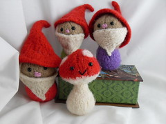 Lily's birthday gnomes