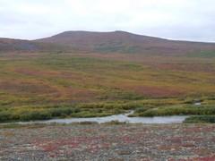 Stewart River Base Camp 360 (Travis S.) Tags: camp alaska river movie tents video jake hill pit clip hills hearth atv nome overlook survey tundra basecamp allterrainvehicle 6wheeler sewardpeninsula stewartriver stewartrivericepatchsurvey southtowest