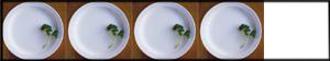 4 Clean Plates