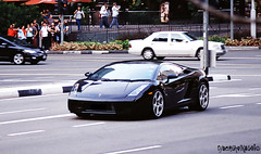 Cropped. Gallardo. (EriPhotography) Tags: camera slr canon eos singapore cropped lamborghini gallardo eriphotography