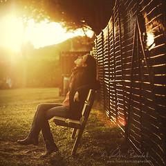 sunshine () Tags: park light summer portrait parco sun verde green andy girl grass sunshine bench warm estate andrea andrew erba rays sole ritratto luce ragazza raggi basking panchina caldo benedetti nikond90