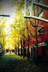 century plaza (jreidfive) Tags: plaza autumn fall century virginia google downtown phone cell pic roanoke va g1 htc