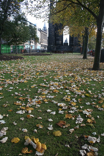 Orange leaves on green grass, Edinburgh in Autumn