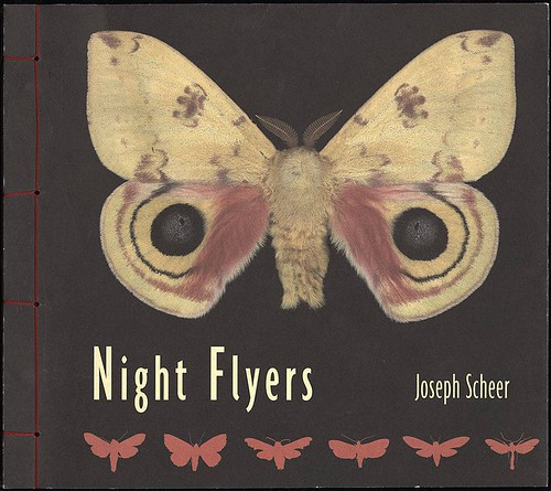 Night Flyers by Joseph Scheer, 2003