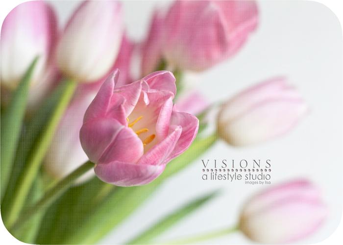 Rounded Tulip WM
