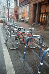 freak snowstorm: snow-covered bikes in corral outside stumptown coffee