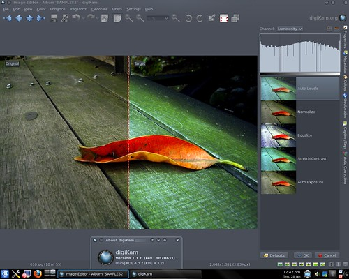 Photography and Open Source Two Nifty Features in digiKam 1.1.0