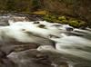 Fluidity (^Troy^) Tags: winter oregon river landscape flow moss rocks peace olympus fluid riverscape northeastoregon platinumheartaward olympuse30 northforkumatillariver lovethesoundofflowingwater