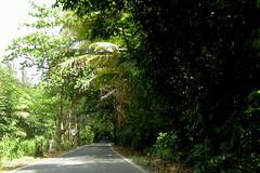 PuertoRico_2305