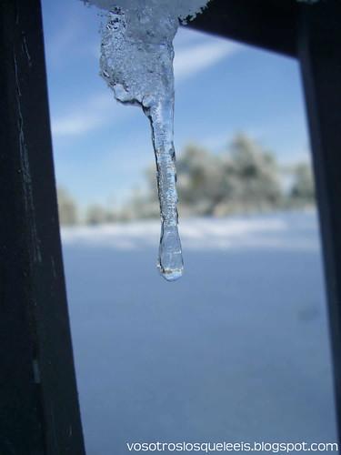 Gota helada