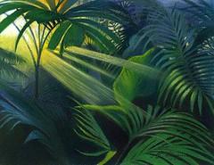 Jungle (matthewgrocott) Tags: jungle