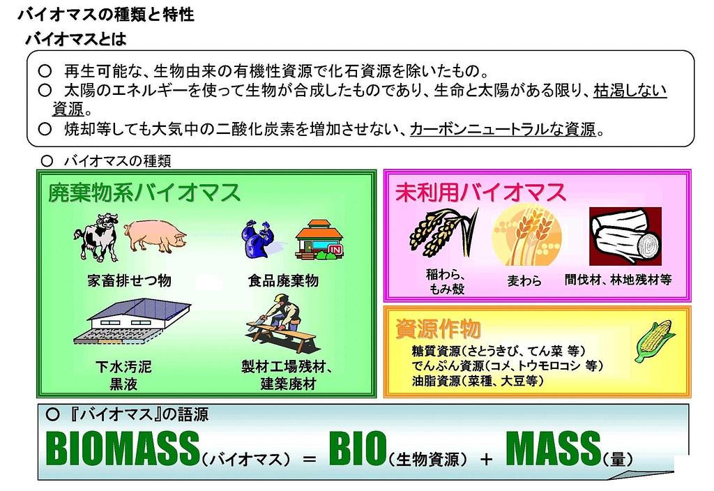 バイオマスとは 2010.3.7(1-2)
