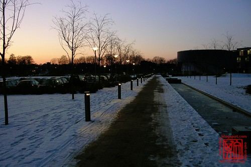 Winter Walkway II