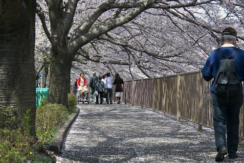 町田樹 画像9