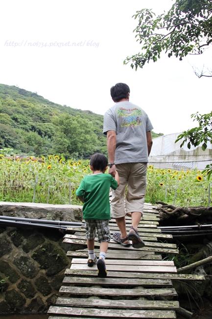 20110612_YangMingMtFlowe_0003 f