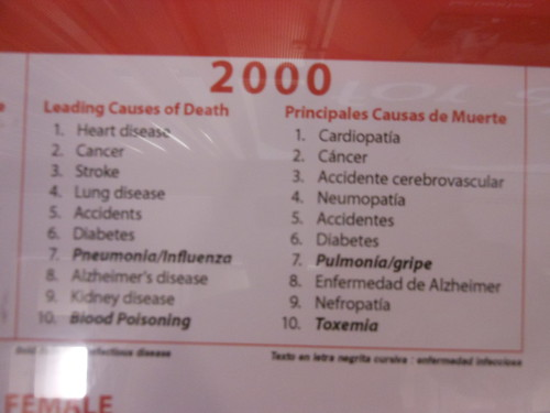Causes of death, 2000