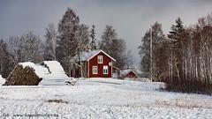 20170222100871 (koppomcolors) Tags: koppomcolors vinter winter snö snow house hus värmland varmland sweden sverige scandinavia