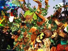 P1010712 Viarreggio - Carnevale 2017 (Giovanni Meniconi) Tags: versilia viareggio carnevalediviareggio carnevale carnival toscana tuscany italia italy arte artista artigianato maschera maschere giovannimeniconi giovanni meniconi mascherate colors colori trucco makeup masks gruppofotofraficoversiliese gfv persone costume ritratto portrait primopiano profonditàdicampo costumi cultura tradizione foclore olympus e500 olympuse500