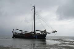 PICT0049 (Zeilvaart Zwartsluis) Tags: bij zwartsluis varen zeilvaart