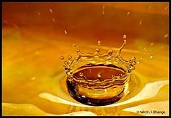 Water Crown (bnilesh) Tags: india abstract water interestingness aqua pattern shapes drop indore liquid dynamics
