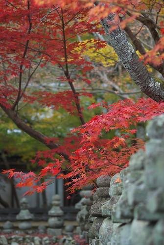 Adashino Nenbutsu temple (化野念仏寺)