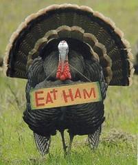 eat ham EHT892.JPG