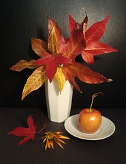 The Power of Color. (Esther Spektor - Thanks for 10+ millions views..) Tags: life flowers autumn red stilllife white black color fall fruits leaves ceramics shapes simplicity vase bouquet dishes everydaylife coth stillphotography supershot ubej