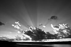 Dramatic sunset (lightmagic) Tags: sunset blackandwhite bw clouds landscape sunrays drama darkclouds lightrays lightstreaks lightshafts dramaticsunset texaslandscape silverefex
