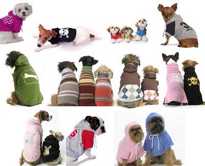 cachorros roupas