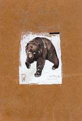 _ (pearpicker.) Tags: bear collage illustration tooth pearpicker