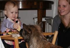 Josefine and Otto (osto) Tags: portrait people woman dog chien pet girl animal cane denmark europa europe sony perro terrier zealand otto pies dslr scandinavia danmark cairnterrier a300 kpek josefine sjlland annesofie  nrum osto rudersdal december2009 alpha300 osto