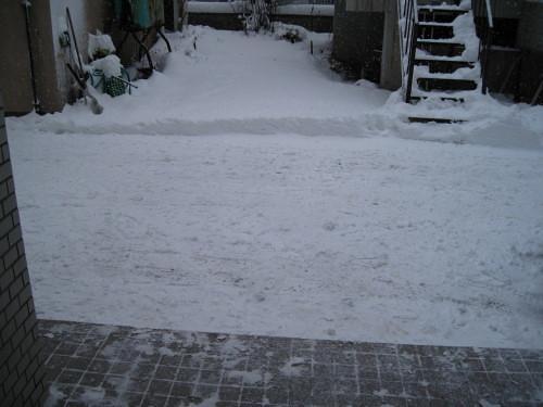 雪 (3).JPG
