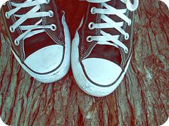 Falsa inocencia. (I s a ) Tags: madera converse rbol tronco zapatillas inocencia falsa