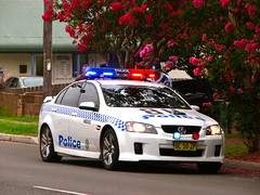 HB 202 VE Commodore SS vehicle stop5 (Highway Patrol Images) Tags: ss police custody ve commodore patrol arrested arrest holden afm handcuffed hawkesburyhighwaypatrol hb202 hawkesbury202