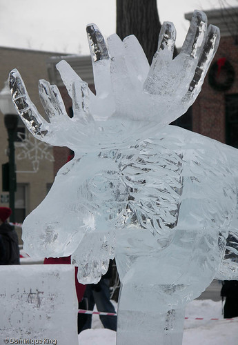 Plymouth (MI) Ice Festival-3