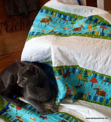 Boys Outdoors Quilt