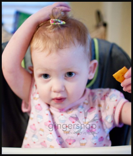 hair clip1