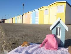Pinkie's Beach Hut (Patricia Lucy) Tags: beach sunshine beachhuts pinkie pinksweaterproject clydeandpinkie