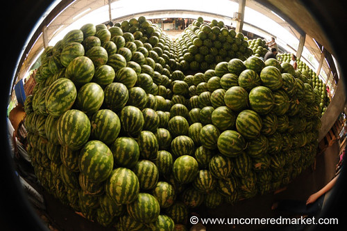 Escher Watermelon Fisheye