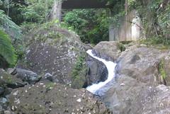 PuertoRico_2171