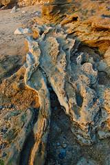 JFGCadiz (JFGCadiz) Tags: españa spain playa andalucia cadiz andalusia espa espa–a cadizfotoscom jfgcadizcom jesusfernandez jesusfernandezgarcia playalacaleta