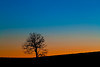 Lonely Tree (JGo9) Tags: blue sunset orange tree silhouette night rural canon fence landscape eos one peace post farm country calm hills clear serenity lone lonely calmness miseltoe regionwide t1i
