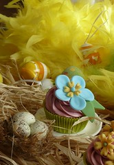 Spring and Easter Cupcakes (Cupcake Sisters (Senel)) Tags: birthday flowers easter cupcakes spain decoration espana cupcake eggs fotoshooting cupcakesisters