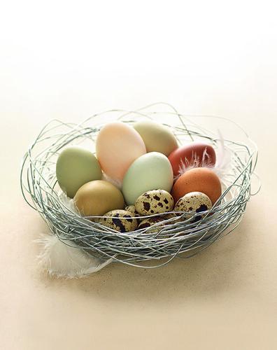 eggs_400px