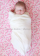 swaddle flowers (polkadotandplaid) Tags: flowers baby girl beautiful blanket newborn delightful swaddle