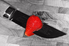 Strawberry halve (x3.wolfgang) Tags: stilllife naturaleza stillleben strawberry sigma messer el bodegn muerta stilllifes erdbeere foveon erdbeeren  naturalezamuerta  colorkey halve life keying still marttiini sd14 elbodegn lifes lapplandmesser