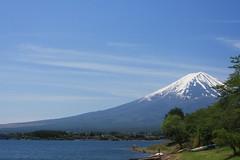 Mount Fuji:  Lake Kawaguchiko, Japan (barberdavidm) Tags: japan fuji mountfuji  fujisan nippon  nihon mtfuji kawaguchiko  fivelakes fujikawaguchiko   yamanashiken yamanashiprefecture lakekawaguchiko nihonkoku nipponkoku minamitsurugun   fujikawaguchikomachi minamitsurudistrict